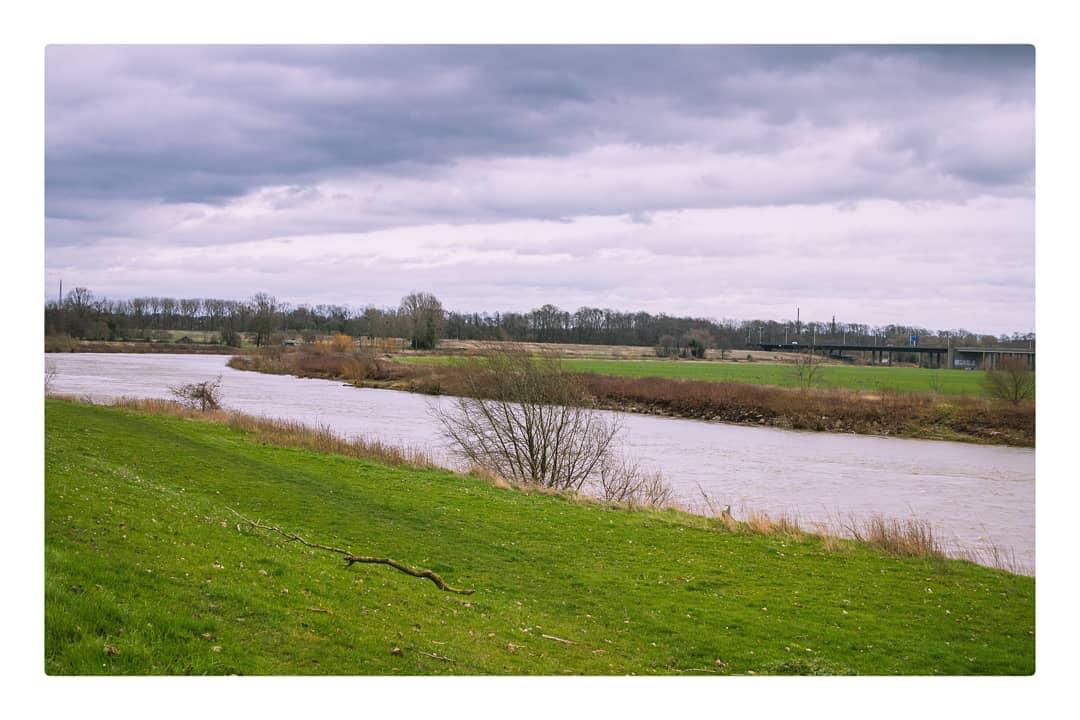 De Maas weer terug in zijn normale bedding.  #meers #meersinbeeld #limburginbeeld #limburg #maas #meuse #maasvallei #grensmaas #grensmaasvallei #VisitLimburg #inlimburg